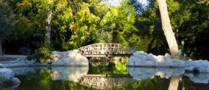 The most beautiful Green Spots and Parks in Athens