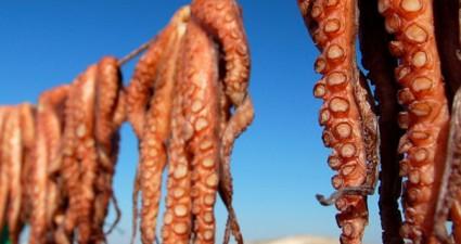 kefalonia seafood