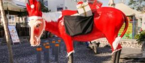 donkey santa